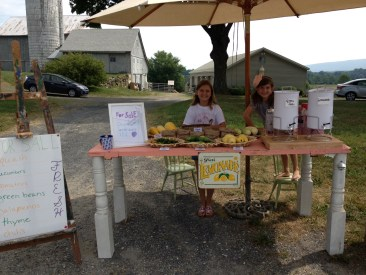 Summer Fun! Farm Stand for Kids