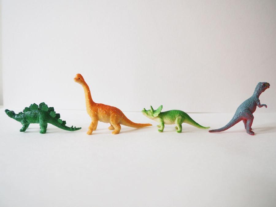 Dinosaures et Compagnie – Mon nouveau projet