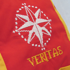 Veritas Guild Tabard Pillow