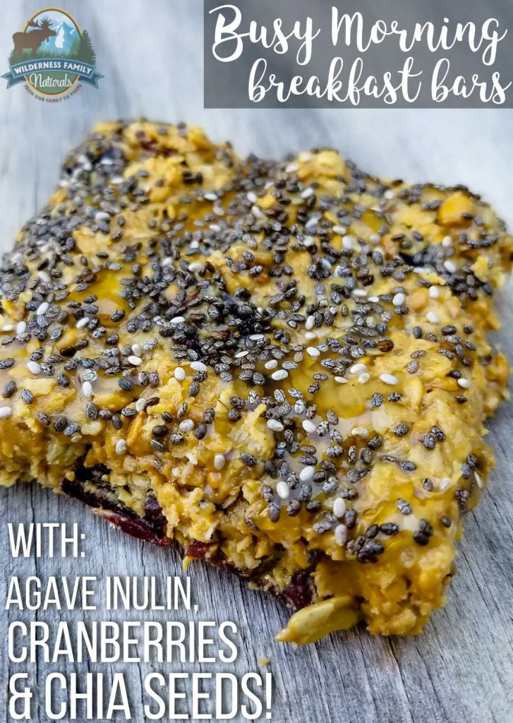 Busy Morning Breakfast Bars (with agave inulin, cranberries, & chia seeds!) | When busy mornings have you rushing for food, try these nutritious breakfast bars. With lots of protein and fiber, you and your kids will stay full 'til lunch! | WildernessFamilyNaturals.com