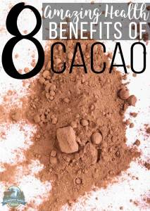 8 Amazing Health Benefits Of Cacao
