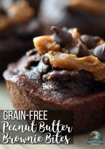 Grain-Free Peanut Butter Brownie Bites