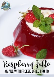 Raspberry Jello (made with freeze-dried fruit!)