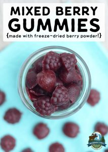 Mixed Berry Gummies {made with freeze-dried berry powder!}