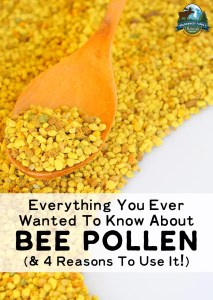 Everything You Ever Wanted To Know About Bee Pollen (& 4 Reasons To Use It!)