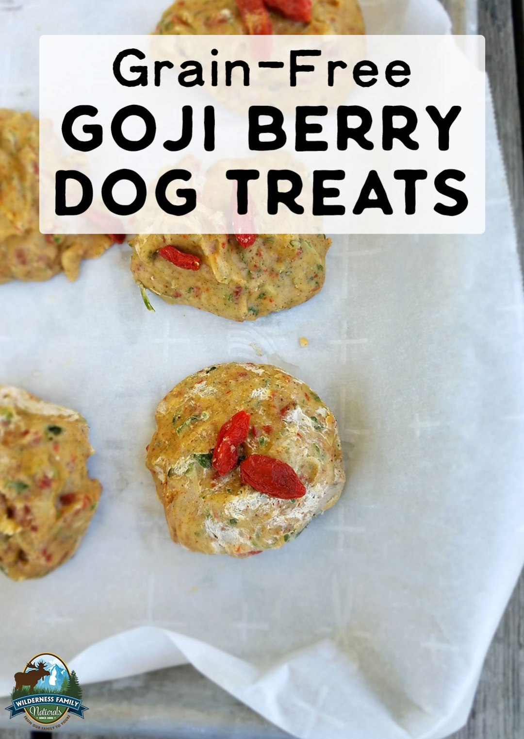 Grain-Free Goji Berry Dog Treats | You're just 4 ingredients and 20 minutes away from Grain-Free Goji Berry Dog Treats! Stored in the freezer, they are a cooling treat on hot summer days and are full of nourishing coconut oil and antioxidants for your fur baby! | WildernessFamilyNaturals.com