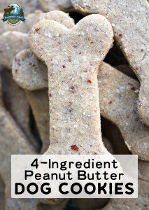 4-Ingredient Peanut Butter Dog Cookies (gluten-free!)