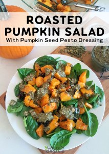 Roasted Pumpkin Salad With Pumpkin Seed Pesto Dressing