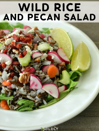 Wild Rice and Pecan Salad | This wild rice and pecan salad is a perfect side dish, but can also become a main by topping with protein such as roast beef or cooked chicken or turkey. While the wild rice does take awhile to cook, the rest of the salad comes together very quickly. Bring this dish to a potluck or even make it ahead for easy weeknight dinners! This is gluten free, vegetarian, real food.