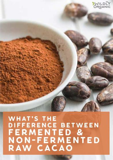 What's The Difference Between Fermented and Non-Fermented Raw Cacao?