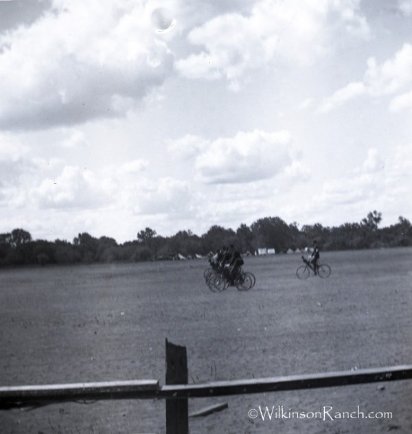 Glass plate negative owned by wilkinsonranch.com
