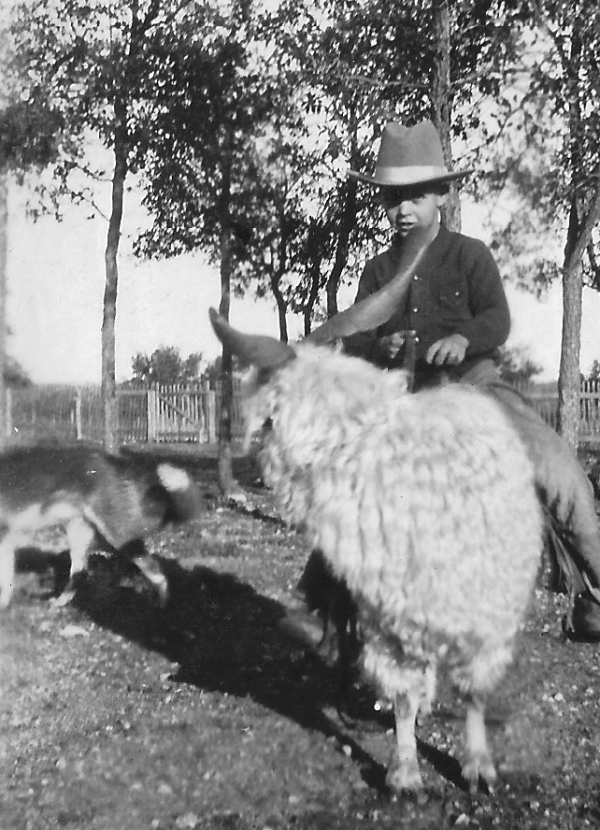 Wilkinson, F L riding an angora about age 8 est 1923
