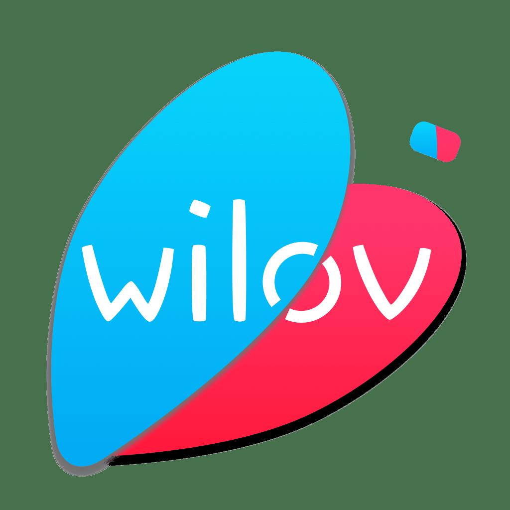 Favicon wilov