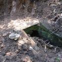 Die Wurzeln wurden mühsam entfernt und das Gewölbe freigelegt.