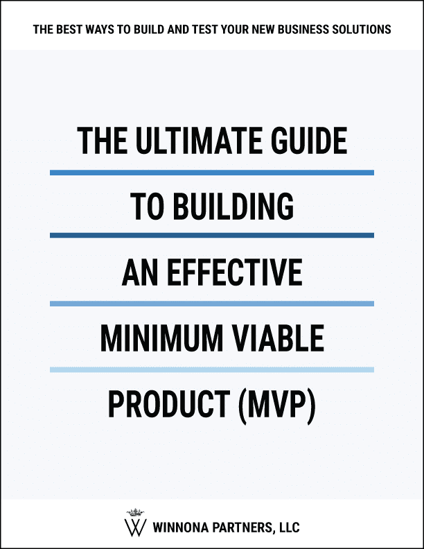 The Ultimate Guide to Developing Successful Software MVPs