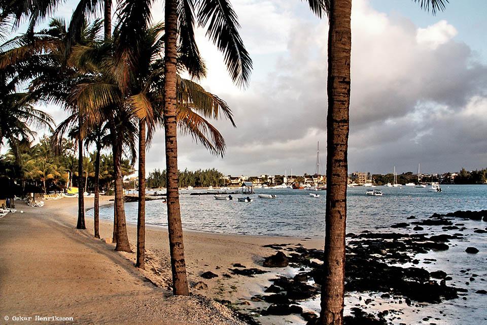 beach-oskar-henriksson-oceans-danielle-de-st-jorre-scholarship-sids-small-island-developing-states-ocean-governance-ioi-canada-women-in-marine-science