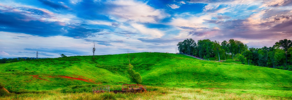 A lone tree stands on a hill near Government Farm Road on John Sevier Highway. This 175 megapixel image was taken in late summer, 2014, and is composed of 105 component images.