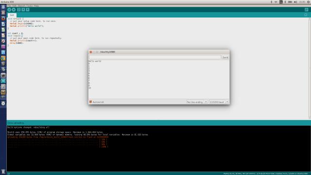 Using the serial monitor to see program output