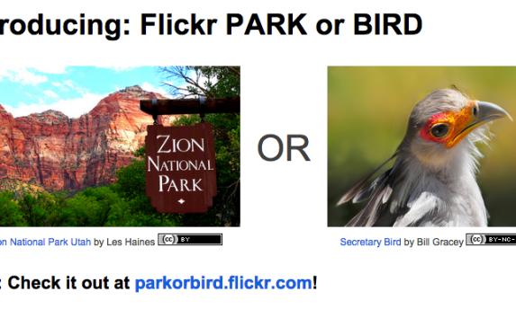 Flickr announced Park or Bird app