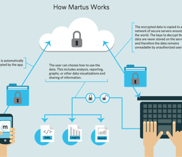 How Martus Works, screenshot from www.martus.org