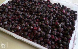 Getrocknete Heidelbeeren