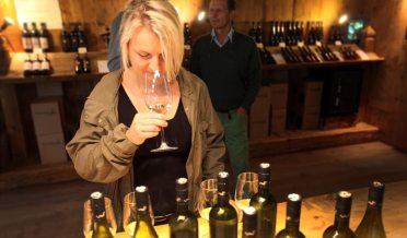 Weinverkostung in Südtirol