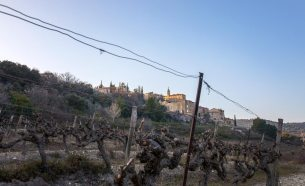 Crillon le Brave | Provence