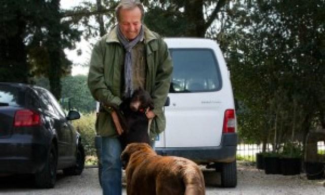 Eric und die Hunde