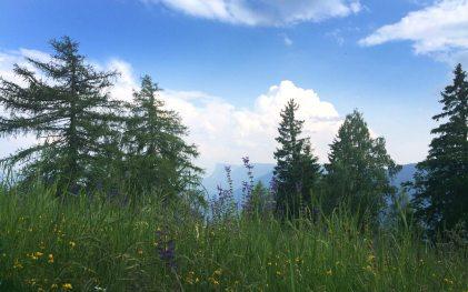 Ausblick vom Vigilius Mountain Resort
