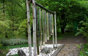 Bambus - Gärten von Schloss Trauttmansdorff