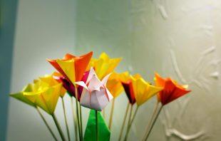 Papierblumen Clab Bozen