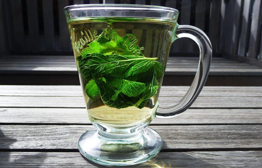 Tee aus frischer Minze