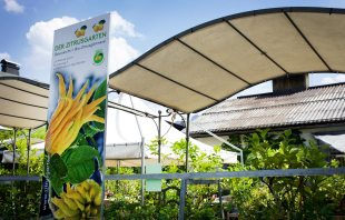 Bio-Zitrusgarten Faak am See