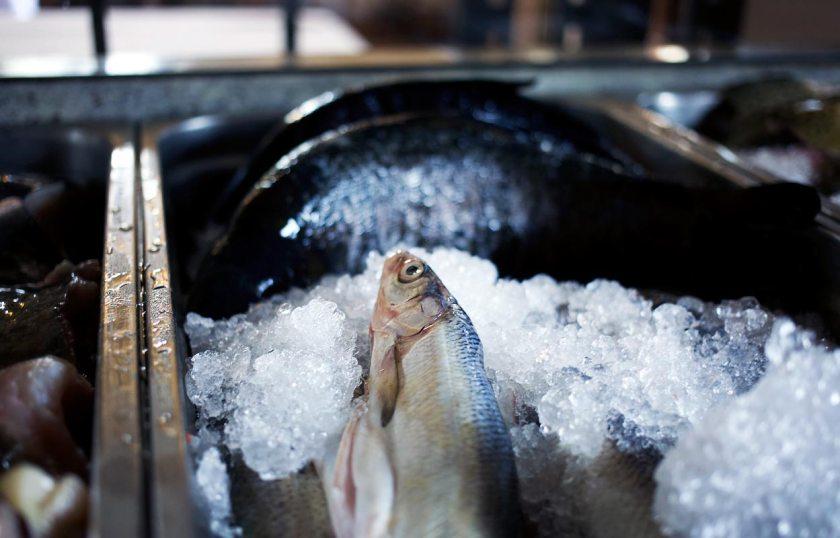 Fische Stiftsschmiede Ossiach