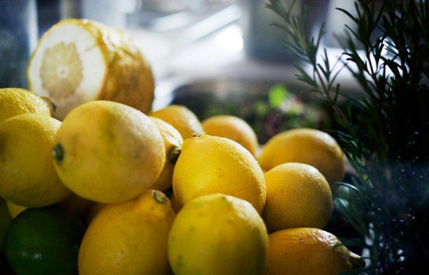 Stiftsschmiede Ossiach Zitronen