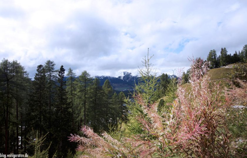 Landschaft bei Pontresina