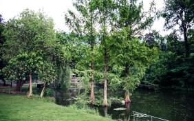 Lidopark Brixen