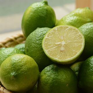 台東阿祥的冬季檸檬