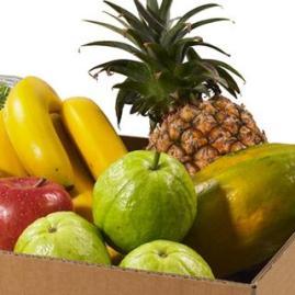 水果嚐鮮組