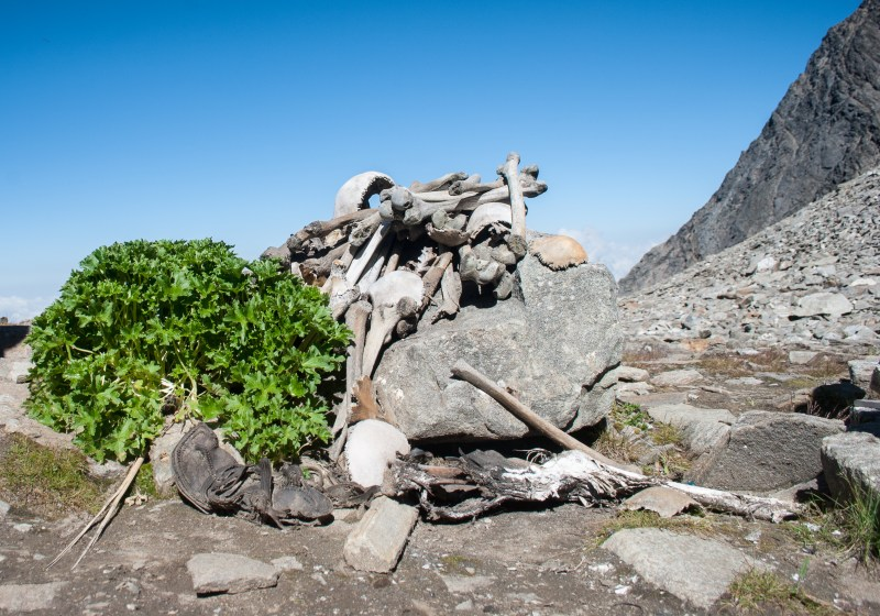 human_skeletons_in_roopkund_lake