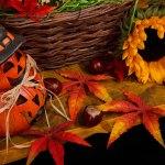 Workman's Halloween Roundup
