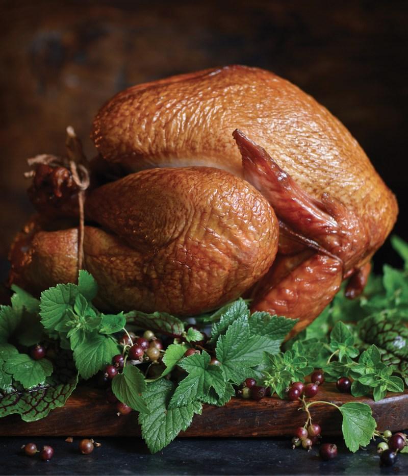 turkey_2291-2437-3