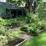 How to Elevate Your Garden