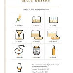 10 Stages of Malt Whisky Production