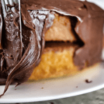Mom's Layer Cake with Fluffy Chocolate Frosting Recipe from <em>The Cake Mix Doctor</em>