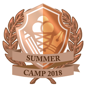 Summer Camp prize winner Copper badge