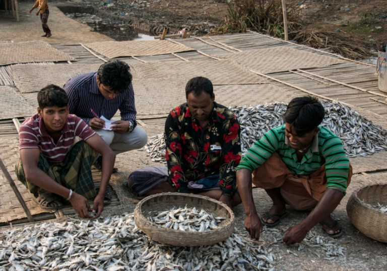 Workers in the dried fish sector in Bangladesh. Photo by Finn Thilsted, 2013.