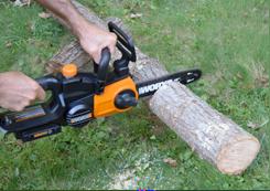 WORX 20V Cordless Pole Saw Chainsaw Cutting Firewood
