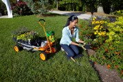A 7-Step Guide to Getting a Perfectly Shaped Garden