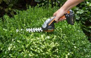 Cleaning, Sharpening & Oiling Garden Tools: DIY Tips